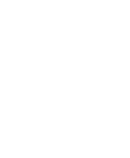 Neonfox logo fehér